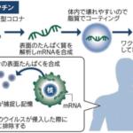 mRNAワクチン